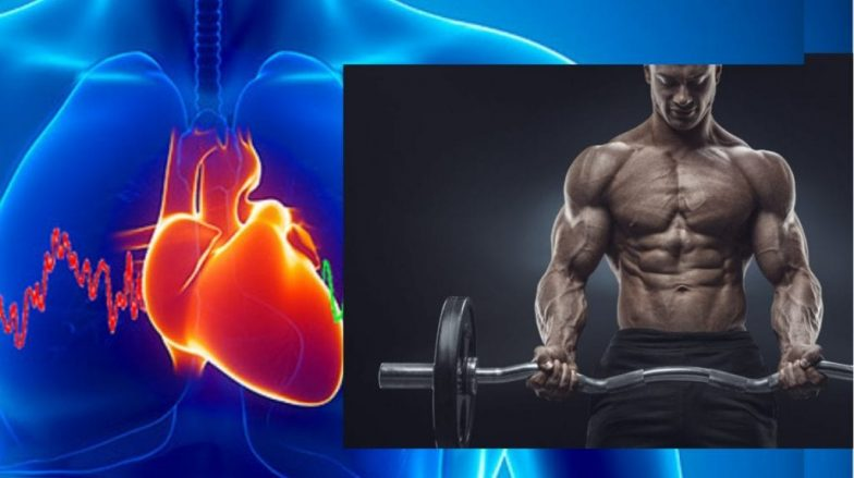 Heart Rate Variability: Build Muscle Faster by Watching Your Heart